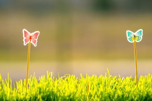 Perto da pequena grama verde com pequenas borboletas de brinquedos fofos especiais. conceito de belas plantas com decoração.