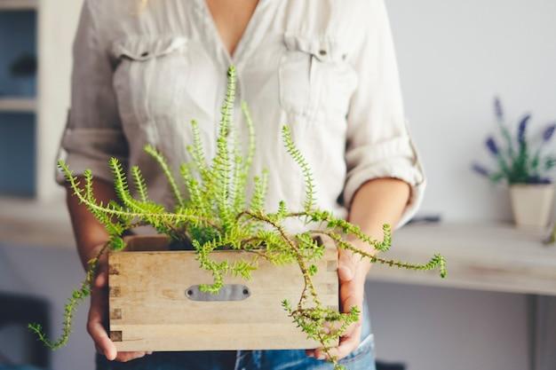 Perto da seção média mulher segurando a planta verde em casa com sala de estar inbackground. trabalho de jardinagem da atividade de lazer interna em casa. conceito de natureza interna