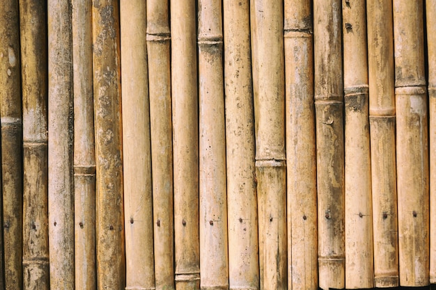 Perto da textura de fundo de madeira de bambu.