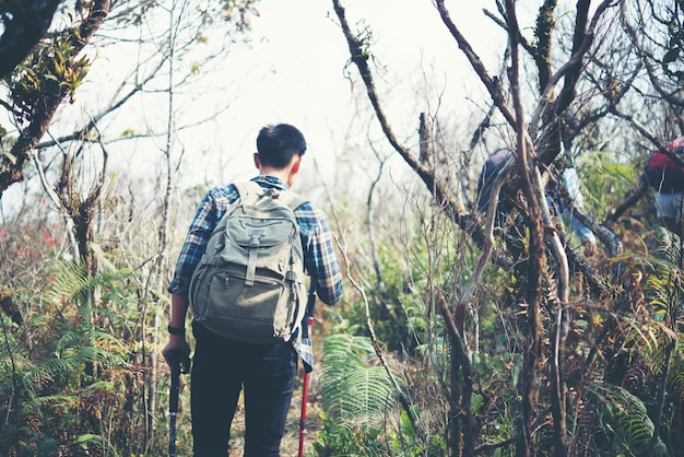 Perto de amigos andando com mochilas em madeiras da parte de trás.