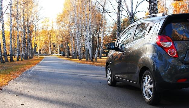 Perto de um carro cinza brilhante vazio estacionado no parque de outono