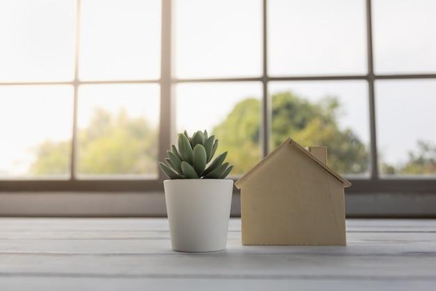 Perto de um mini brinquedo de madeira com vaso de planta verde