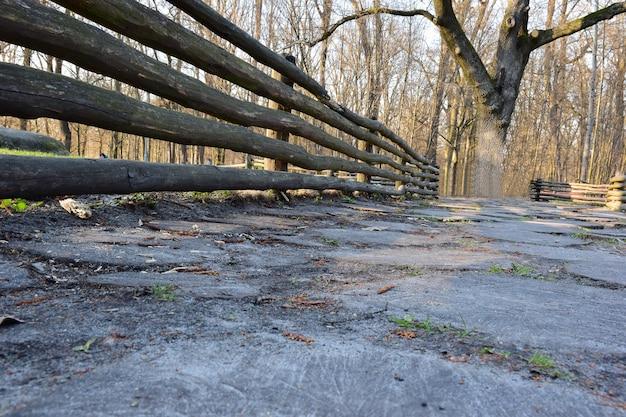Perto de uma cerca de madeira feita de toras, há um pavimento feito de muitos tocos redondos de madeira no solo. ao fundo uma árvore e um parque