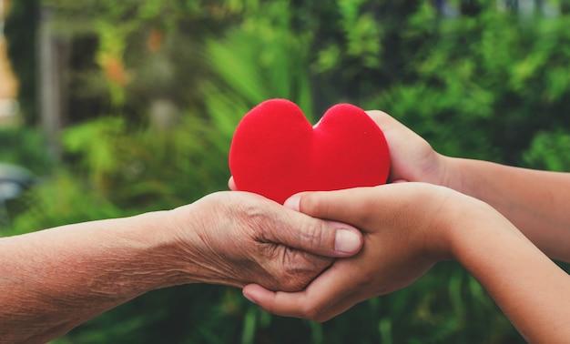 Perto de velhas e jovens mãos segurando um coração vermelho com fundo verde da natureza, pessoas, idade, família, amor e conceito de saúde