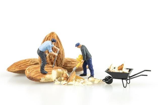 Perto do trabalhador em miniatura com sementes de amêndoa isoladas no fundo branco.