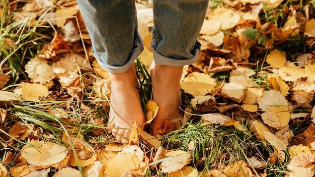 Pés de belas mulheres descalças nas folhas amarelas do outono