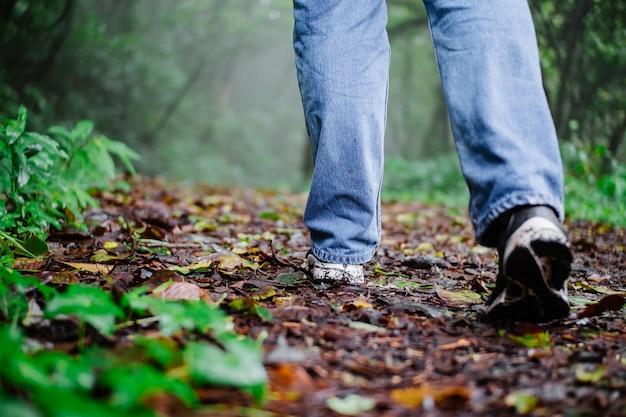 Pés de mulher em sapatos em um caminho de floresta tropical