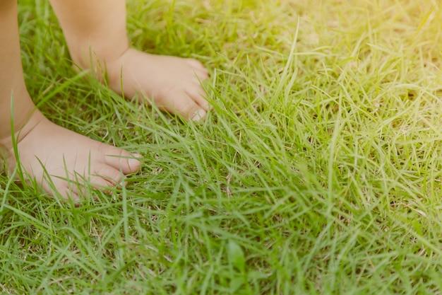 Pés do bebê no gramado