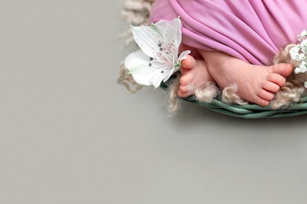 Pés do bebê recém-nascido com flor branca, dia das mães. bebê recém-nascido