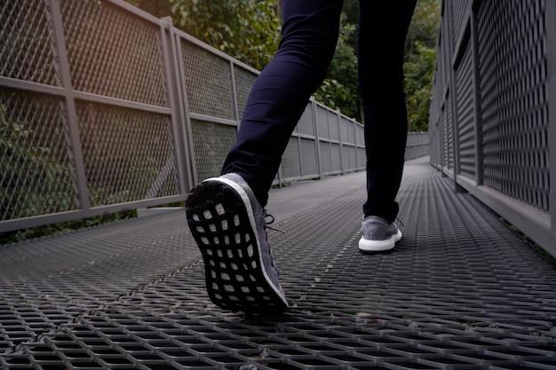 Pés fêmeas delgados na calças de ganga e nas sapatilhas cinzentas que andam ao longo da fuga da floresta.