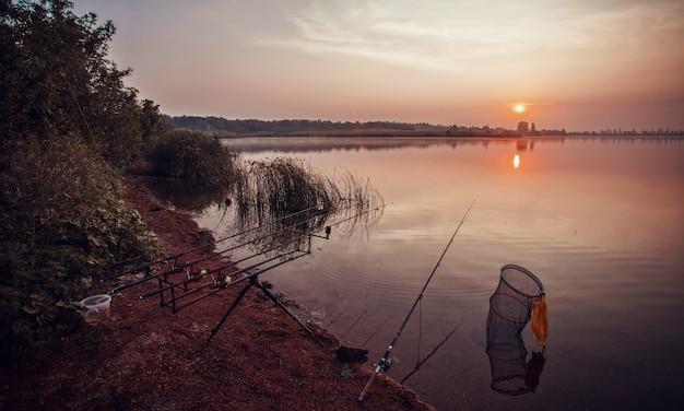 Pesca noturna, varas de carpa, close up de varas de pesca