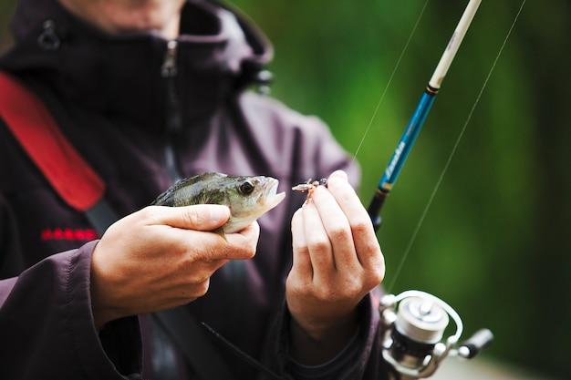 Pescador, removendo, gancho, de, a, peixe, boca