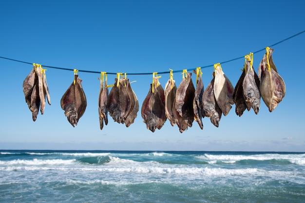 Pesque a secagem no vento do mar na praia.