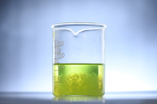 Pesquisa de algas em laboratórios, conceito de ciência de biotecnologia