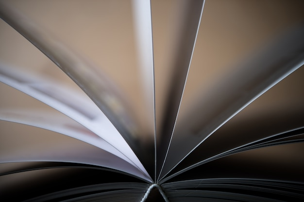 Pesquisa do fundo da informação da literatura