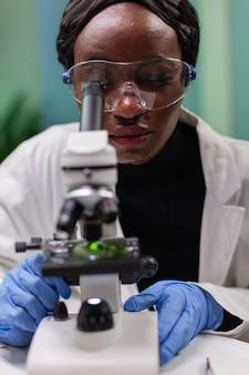 Pesquisador biólogo africano analisando folha verde ogm