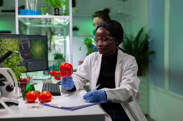 Pesquisador biólogo afro-americano analisando pimenta injetada com pesticidas
