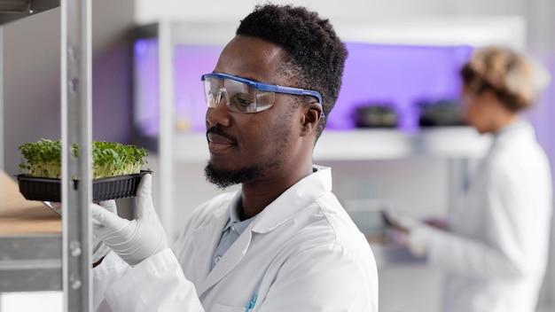 Pesquisador masculino em laboratório com óculos de segurança e planta
