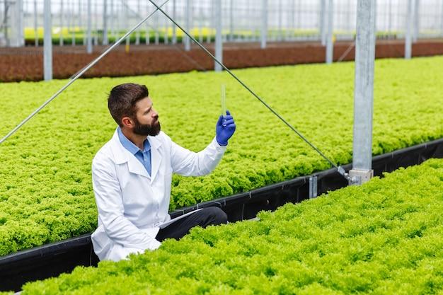 Pesquisador masculino no manto branco olha para um tubo de vidro com amostra sentado diante das plantas
