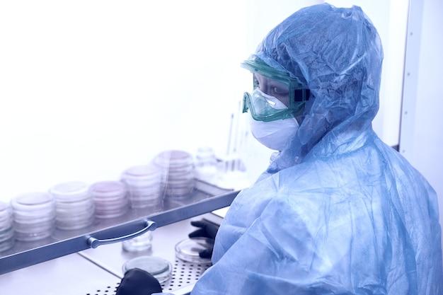 Pesquisador trabalhando com placa de petri com bactérias no conceito de laboratório bacteriológico de