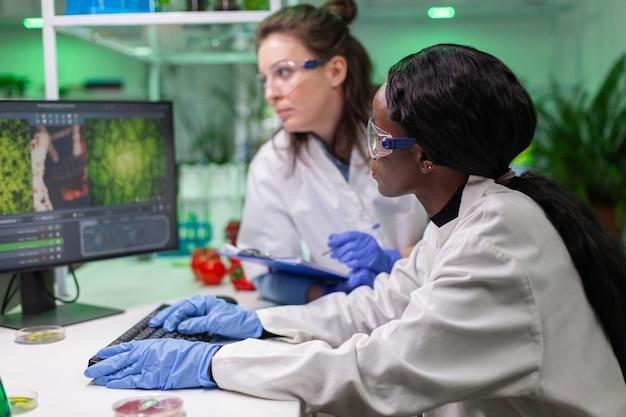 Pesquisadores da equipe médica falando sobre carne vegetariana trabalhando em substituto de carne bovina vegetal em laboratório de microbiologia