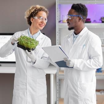 Pesquisadores em laboratório com óculos de segurança verificando planta
