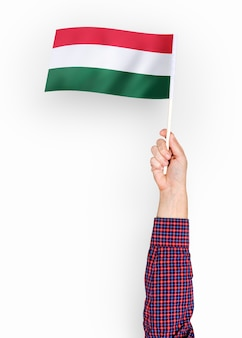 Pessoa acenando a bandeira da hungria
