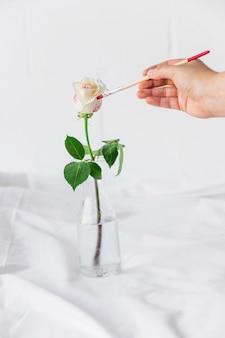 Pessoa, pintura, rosa, em, vaso, com, escova