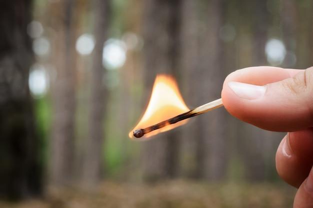 Pessoa segura um fósforo aceso em uma mão em uma floresta de coníferas