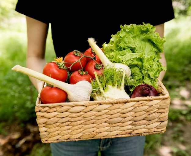 Pessoa, segurando, balde, com, legumes, frente, vista