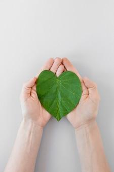 Pessoa, segurando um coração de folha no fundo branco