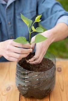 Pessoa segurando uma planta em um vaso de plástico