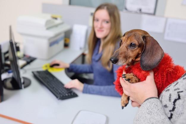Pessoas com seus animais de estimação estão à espera de um exame médico na clínica veterinária.