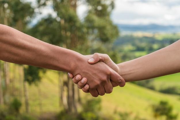 Pessoas cumprimentando, apertando as mãos na natureza