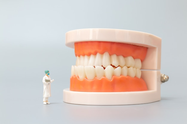 Pessoas em miniatura: dentista que repara dentes humanos com gengivas e esmalte, conceito médico e de saúde