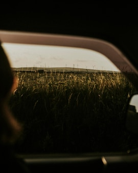 Pessoas em uma viagem de carro passando pela fazenda do moinho de vento
