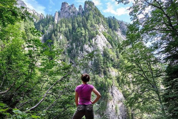 Pessoas, olhar, a, montanhas, em, a, floresta