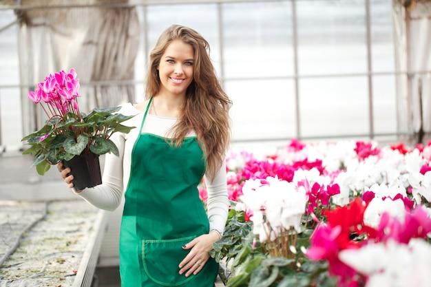 Pessoas que trabalham em um viveiro de plantas