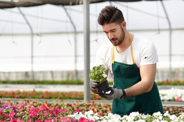 Pessoas que trabalham em uma loja de jardinagem