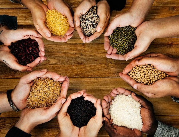 Pessoas, segurando, grãos, em, seu, mãos