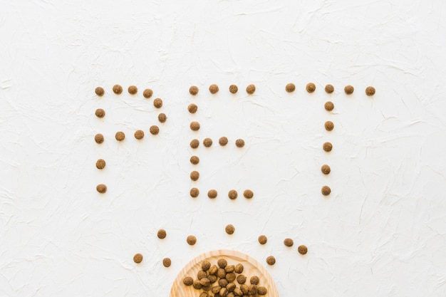 Pet escrevendo perto de prato com comida