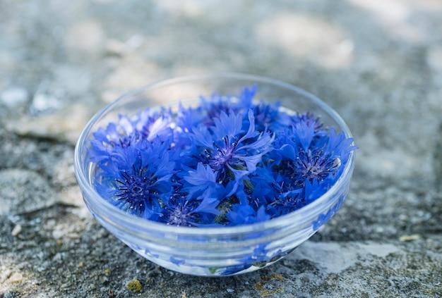 Pétalas de flores na água para tintura de planta
