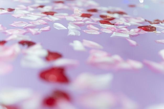 Pétalas de flores na água roxa
