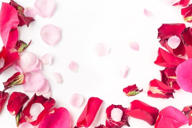Pétalas de flores rosa