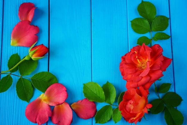 Pétalas de rosa vermelhas mentem em um estilo vintage na mesa azul