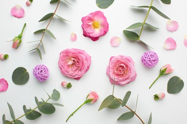 Pétalas de rosas da vista superior