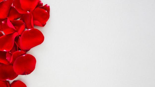 Pétalas de rosas vermelhas espalhadas na mesa