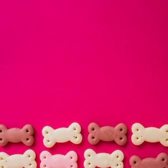 Petiscos engraçados do cão no fundo colorido
