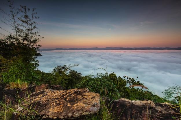 Pha-chom-mok, mar da paisagem da névoa na montanha na província tailândia de nongkhai.