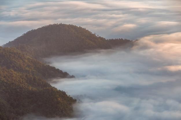 Pha tung montanha no tempo do amanhecer, chiang rai